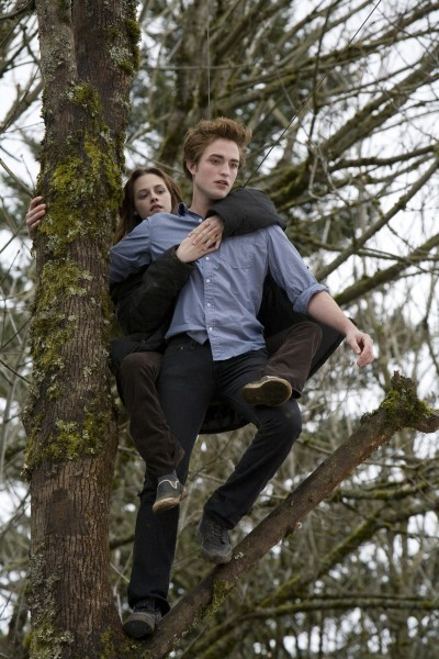 image twilight chapitre 1 fascination arbre kristen stewart robert pattinson