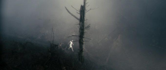 image rêve forêt charlotte gainsbourg antichrist lars von trier