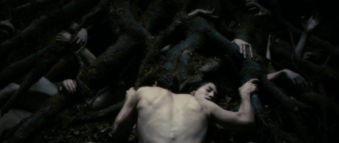 image scène arbre chalotte gainsbourg antichrist lars von trier