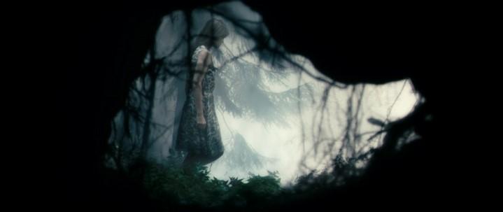 image charlotte gainsbourg antichrist forêt