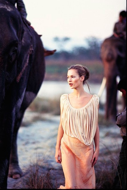 kate moss elephants