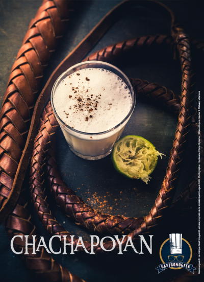 gastronogeek livre des potions chachapoyan