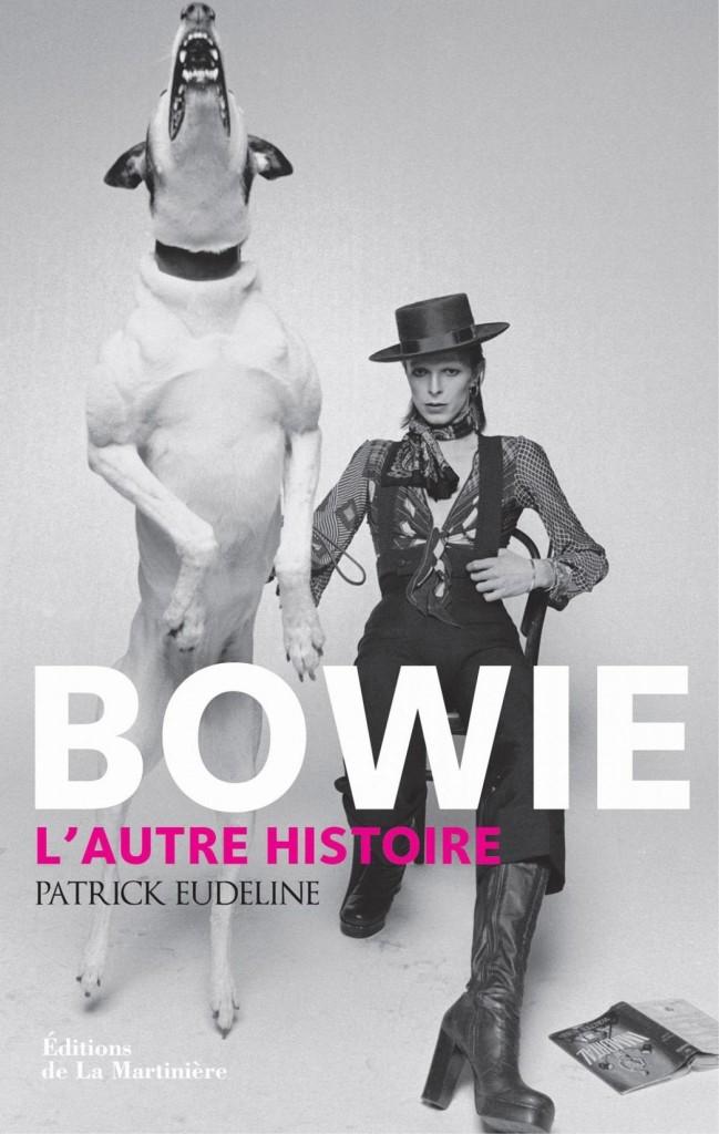 image couverture bowie l'autre histoire patrick eudeline éditions de la martinière