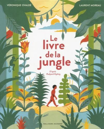 image couverture le livre de la jungle