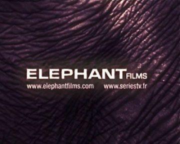 image logo elephant films