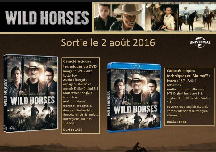 wild-horses-sortie
