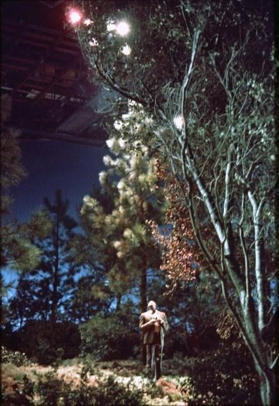 image la nuit des extra-terrestres