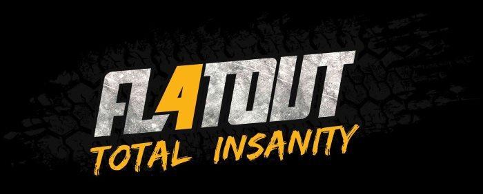 image logo flatout 4 total insanity