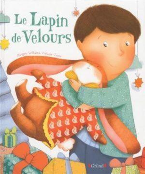 image couverture le lapin de velours