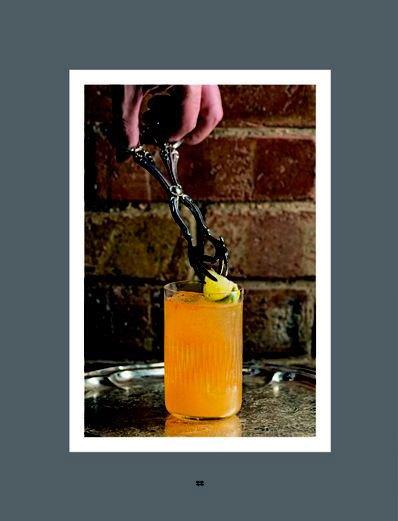 image tête de mule livre experimental cocktail club larousse