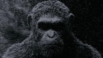 [News – Cinéma] Bande-annonce de «La Planète des Singes – Suprématie» de Matt Reeves, sortie le 2 Août 2017
