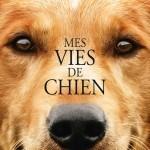 image poster mes vies de chiens lasse hallström