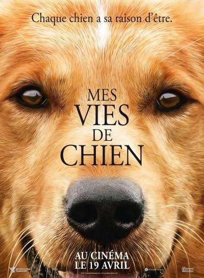 [News – Cinéma] Bande-annonce de «Mes vies de Chien» de Lasse Hallström, sortie le 19 Avril