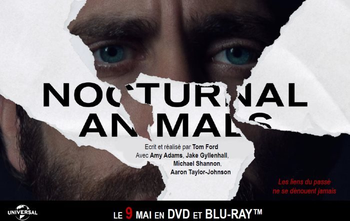 image video nocturnal animals