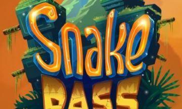 image test playstation 4 snake pass