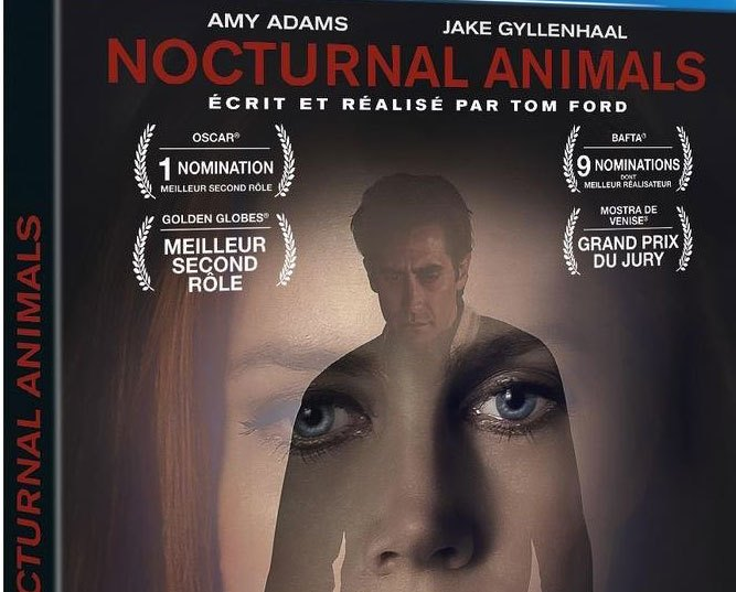 image gros plan boitier blu-ray nocturnal animals