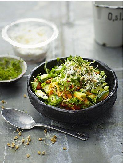 image bol de légumes et de germes au fromage frais toutes les nuances de green tanja dusy solar