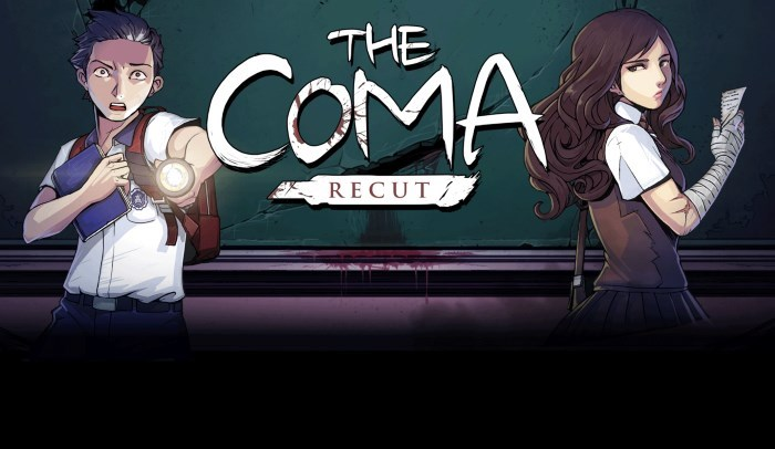 image artwork the coma recut