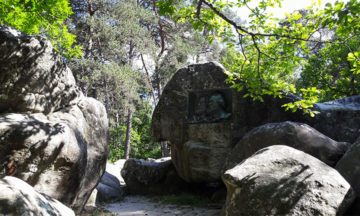 image gp médaillon théodore rousseau jean-françois millet porte aux vaches forêt de fontainebleau barbizon