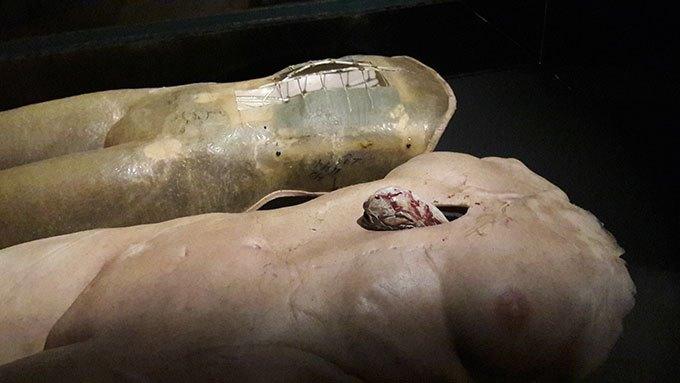 image bustes alien la résurrection expo caro jeunet halle saint-pierre