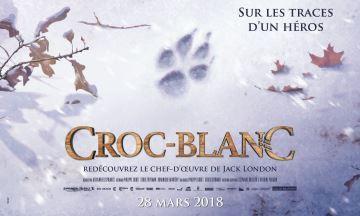 image article croc blanc