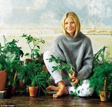 image gwyneth paltrow tout est simple plantes vertes herbes