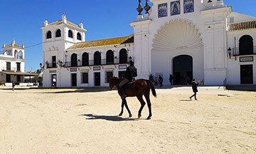 image cheval place église el rocio