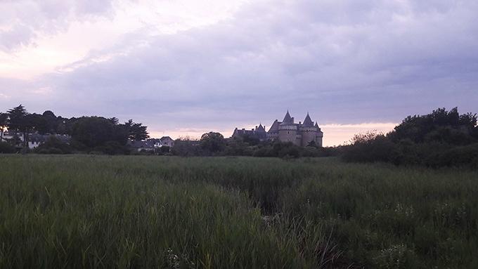 image vue sur le château de suscinio depuis les marais