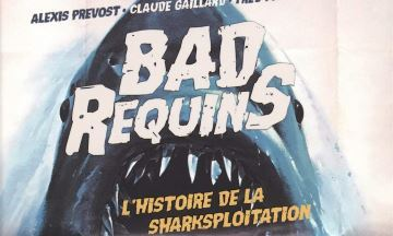 image critique bad requins