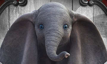 image article dumbo