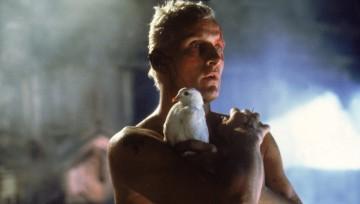 "Analyse du roman ""Blade Runner"""
