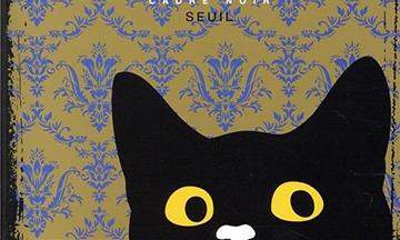 image gros plan couverture le blues du chat de sophie chabanel éditions du seuil