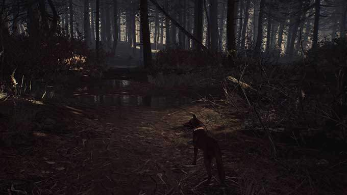 image gameplay blair witch