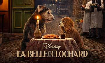 gros plan affiche la belle et le clochard live action 2019 disney plus