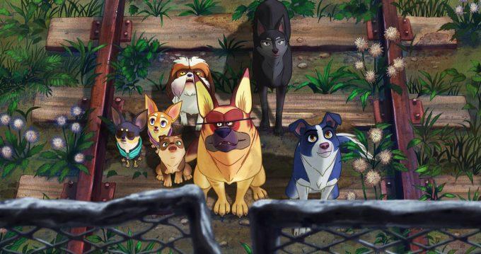 image Lee Choon-Baek nous les chiens