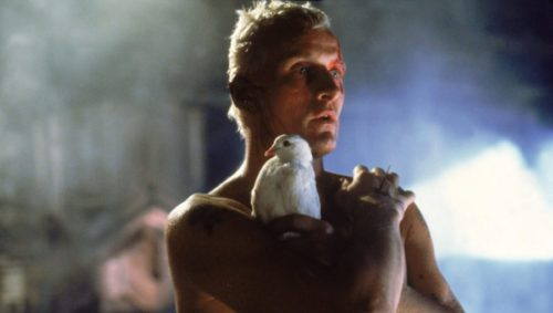 "Le replicant Roy Batty (Rutger Hauer) tenant une colombe dans le film ""Blade Runner"""