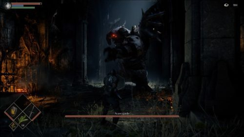 image gameplay demon's souls