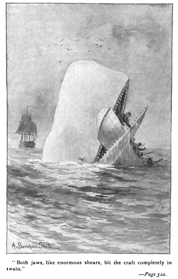 Illustration pour une édition de Moby Dick. Source : Wikipédia.
